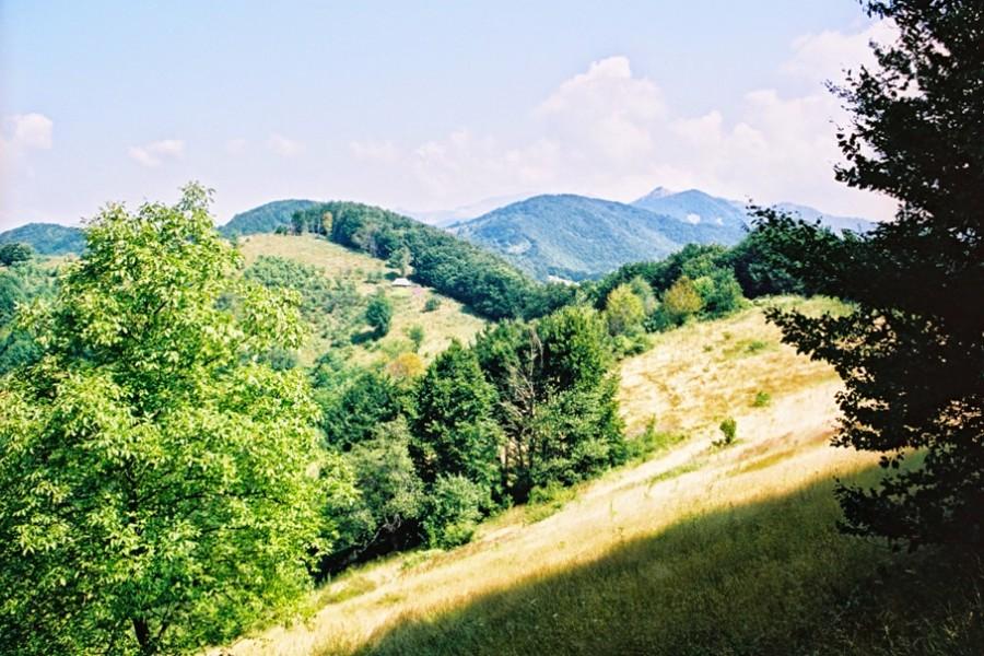 Poiana cu Peri w górach Cernei